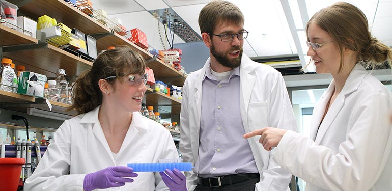 undergraduate thesis chemical engineering