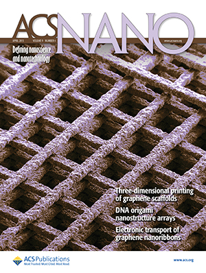 The 3-D printed graphene scaffold appeared on the cover of ACS Nano.