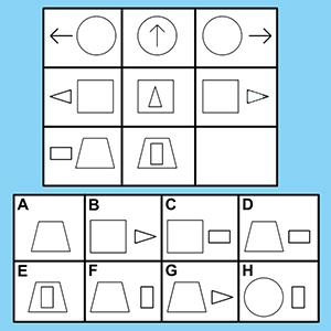 An example question from the Raven's Progressive Matrices standardized test. The test taker should choose answer D because the relationships between it and the other elements in the bottom row are most similar to the relationships between the elements of the top rows.