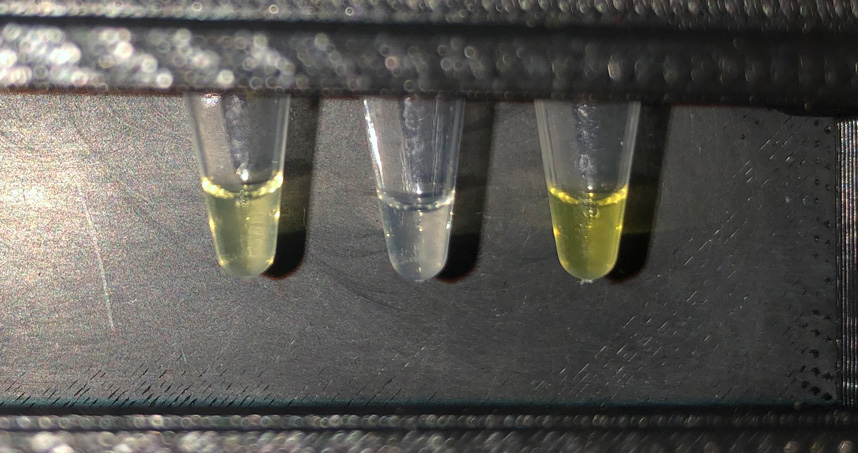 The test tube on the left shows a positive result from water sampled in Costa Rica.
