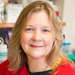 Kimberly Gray, Chair, Civil and Environmental Engineering
